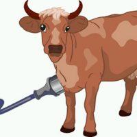 Privat: Koola laddare till Milko